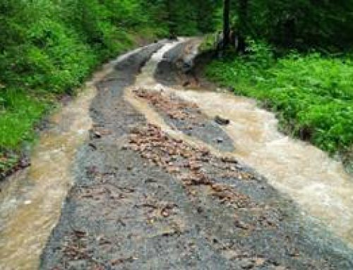 Heidelberg: Starkregen hat Waldwege beschädigt